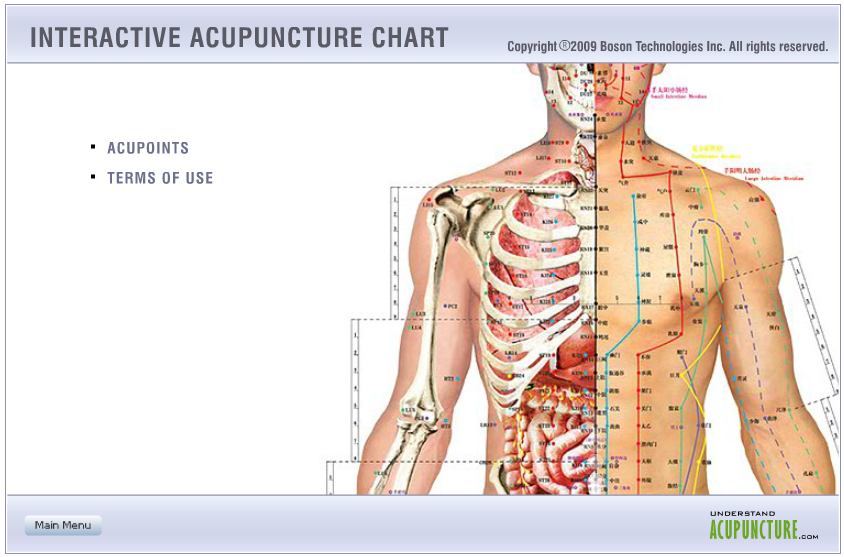 interactive acupuncture chart