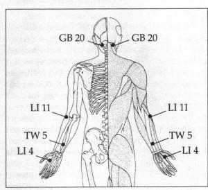 acupuncture/acupressure points