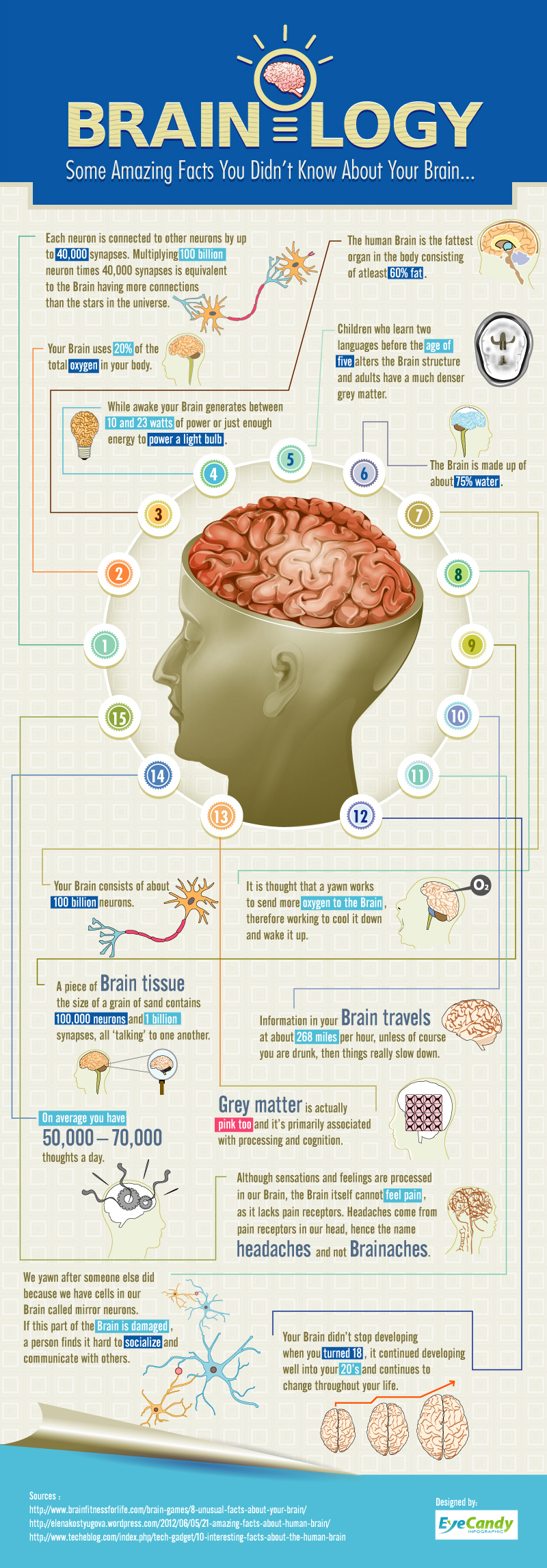 Brainology - some amazing facts you did not know about your brain